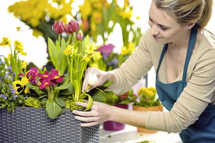 Devenir fleuriste formation et salaire fiche m tier for Trouver un fleuriste